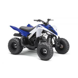 2018 Yamaha Raptor 90
