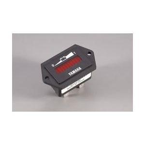 Battery Energy Meter-36V