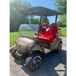New 2019 Yamaha DR2A PTV EFI Gas Golf Car