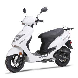 2020 Wolf RX-50 - White
