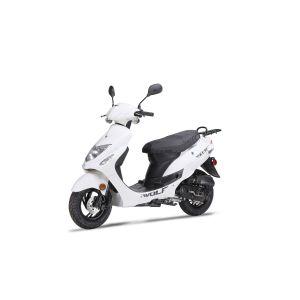 2018 Wolf RX-50 - White